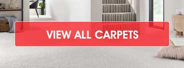 View All Carpets - Shop Now
